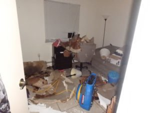 Water Damage Repair Canton OH